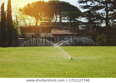 Locsol öntözés mezőgazdasági mező víz fű Stock fotó © OleksandrO