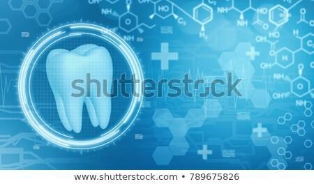 стоматологических научный дизайна прозрачный зубов Сток-фото © Tefi
