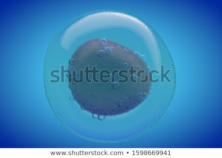 Sperm and egg cell. 3d illustration. on blue background Stock photo © tussik