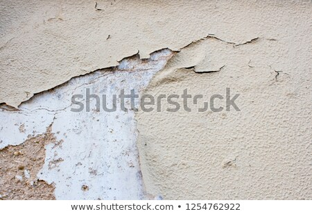 old weathered mudbrick wall texture stock photo © stevanovicigor
