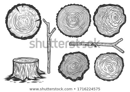 Fa embléma fatörzs vektor fűrész vág Stock fotó © Andrei_