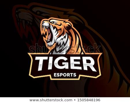 tiger gamer mascot stock photo © krisdog