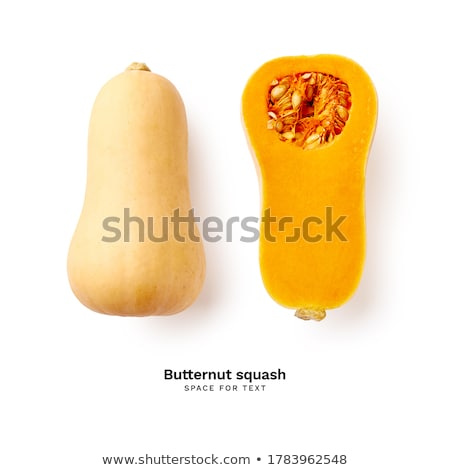 Butternut squash in studio Stock photo © cynoclub