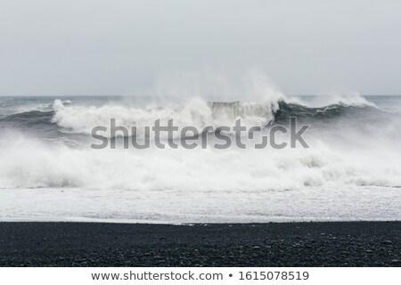 Océan plage noir sable belle mousse Photo stock © Kotenko