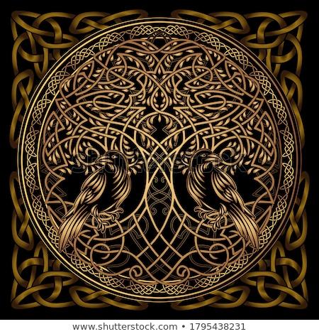 Vettore celtic decorazione design elementi nero Foto d'archivio © TRIKONA