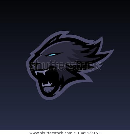 black panther angry gamer esports mascot stock photo © krisdog