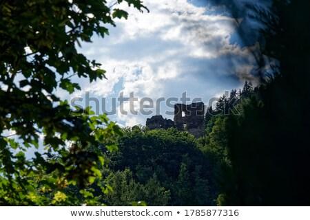 Castle's tower hidden in the woods Stock photo © stefanoventuri