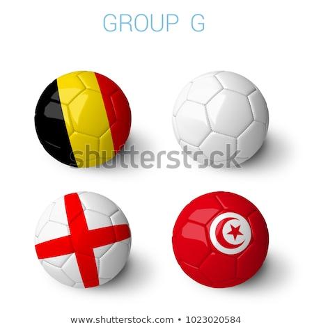 russia map flag and soccer ball Illustrator. design graphic Stock photo © alexmillos