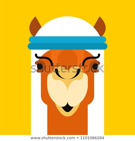 Arabian camel. Animal in National UAE clothing. Vector illustrat Stock photo © popaukropa