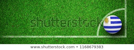Football in uruguay colours  against close up view of astro turf Stock photo © wavebreak_media