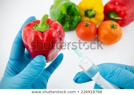 GMO Food Test Syringe Stock photo © lenm
