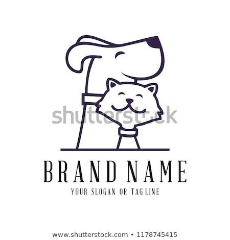 cat logo set stock photo © krustovin