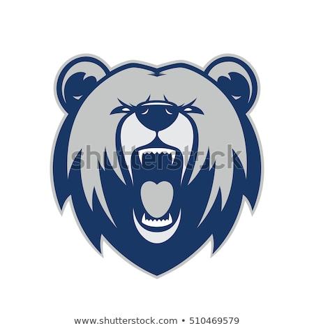 クマ マスコット ベクトル アイコン 芸術 対称の ストックフォト © morys