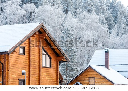 rustic timber cabin with chimney in snowy winter landscape stock photo © lovleah