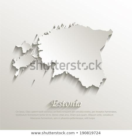 Észtország térkép ikon vektor szimbólum világ Stock fotó © blaskorizov