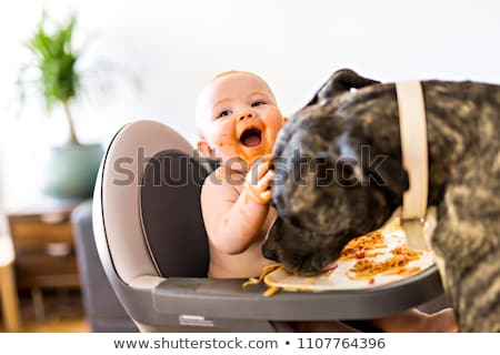 Stock photo: Little baby girl eating her spaghetti dinner and making a mess with pitbull lich