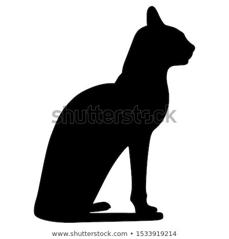 эскиз египетский кошки изолированный белый вектора Сток-фото © Arkadivna