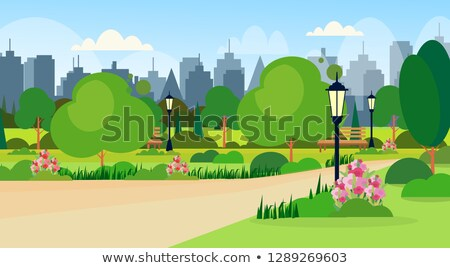 Wooden Bench, Abstract Tree and Street Lamp Vector Stock photo © robuart