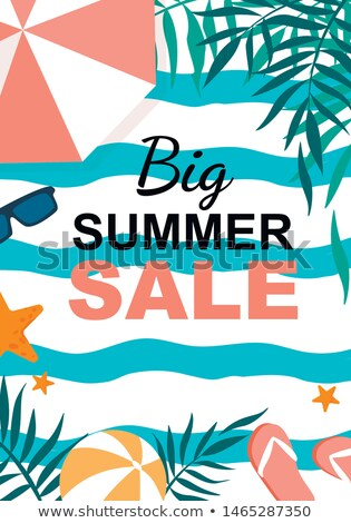 Summer Time Big Sale Banners Vector Illustration Stock photo © robuart