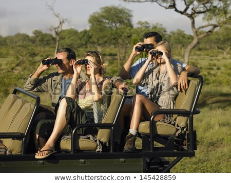 Groep toeristen safari foto giraffe boom Stockfoto © jossdiim