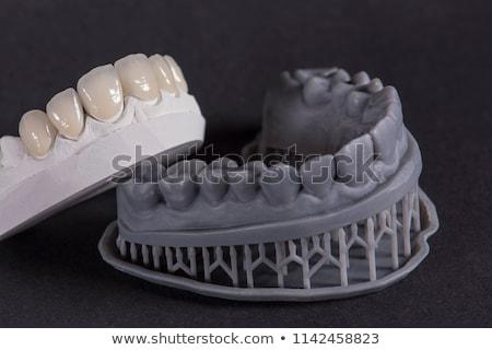 Diş model diş hekimliği aletleri mavi Metal oyuncak Stok fotoğraf © AndreyPopov