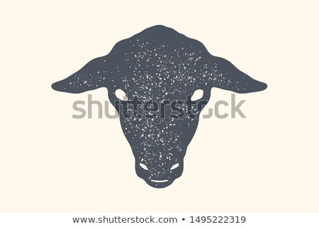 Sheep. Vintage retro print, poster, banner. Black and white Stock photo © FoxysGraphic