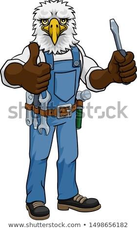 Águia eletricista handyman chave de fenda mecânico Foto stock © Krisdog