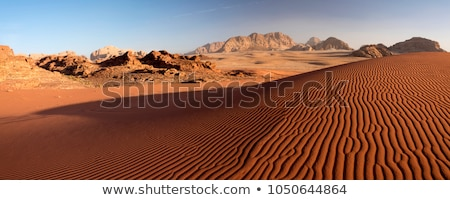 View of a desert at sunset time Stock photo © moses