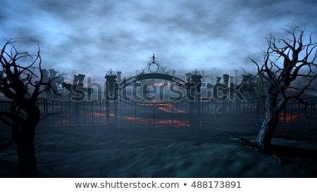 mglisty · cmentarz · cmentarz · martwych · linii · kruk - zdjęcia stock © wetzkaz