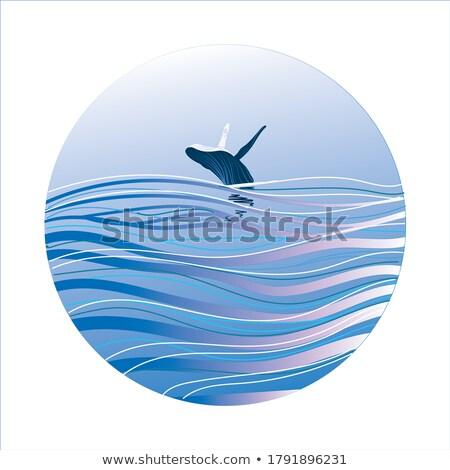 Grappig walvis uit water illustratie cartoon Stockfoto © tiKkraf69