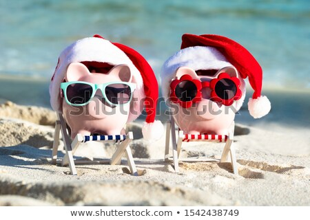 Two Pink Piggybanks With Sunglasses And Santa Hats At Beach stock photo © AndreyPopov