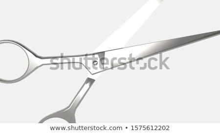 Metaal schaar 3D 3d render illustratie geïsoleerd Stockfoto © djmilic