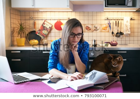 Business woman working on her laptop in a cozy environment Stock photo © ra2studio