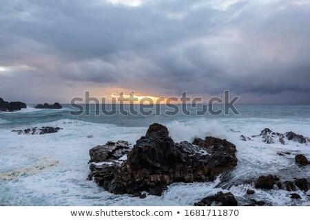Poderoso tempestade oceano costa tenerife norte Foto stock © ruslanshramko