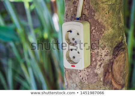 Zöld természet energia elektromos foglalat fa Stock fotó © galitskaya