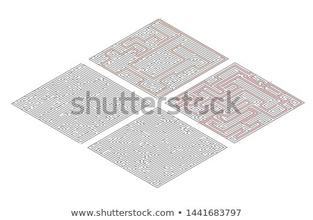 Two different mazes of high complexity in isometric view on white and solution with red paths Stock photo © evgeny89