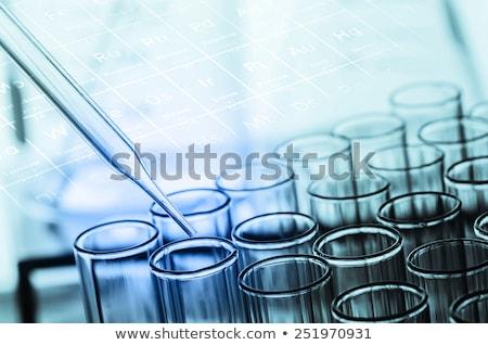 Biológia kémcső áramló flaska kémia felszerlés Stock fotó © yupiramos