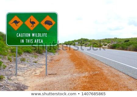 Австралия шоссе знак высокий разрешение графических зеленый Сток-фото © kbuntu