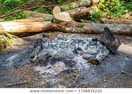 Stock photo: firewood ash