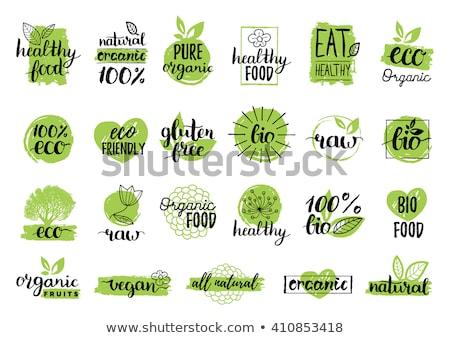 Szett bio öko organikus elemek címkék Stock fotó © orson