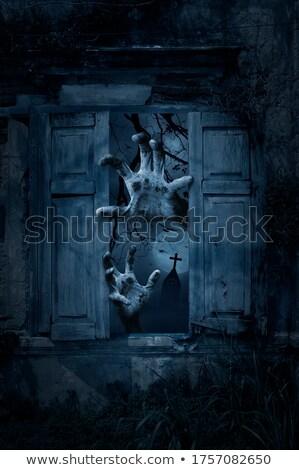 assustador · igreja · 3d · render · gato · morte · crânio - foto stock © ancello