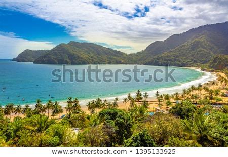 maracas bay trinidad stock photo © phbcz