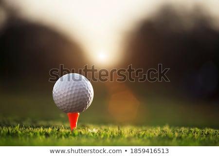 午前 右 ゴルファー オフ 早朝 光 ストックフォト © Sportlibrary