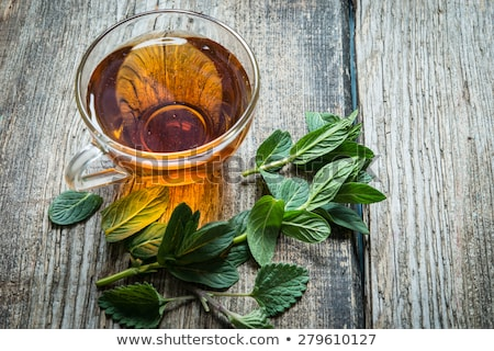 peppermint tea Stock photo © joker