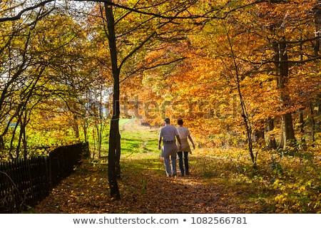 pár · ősz · séta · férfi · boldog · tél - stock fotó © photography33