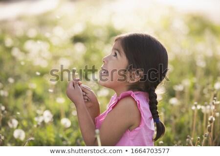 summer girl looking up stock photo © carlodapino