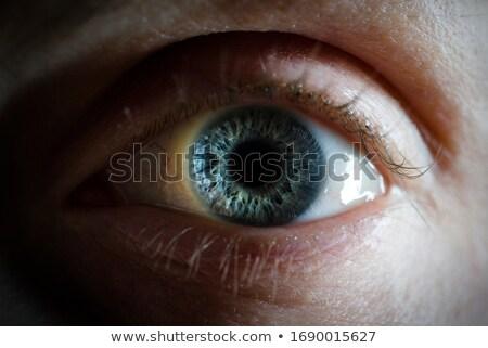 Menselijke ingesteld kleur iris computer ontwerp Stockfoto © timurock