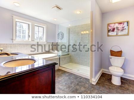 nice empty bathroom with large white tub stock photo © iriana88w