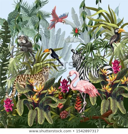 tropikal · sahne · palmiye · ağaçları · ağaç · gün · batımı · deniz - stok fotoğraf © wad