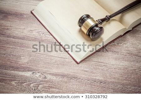 Gavel resting on a history book stock photo © wavebreak_media